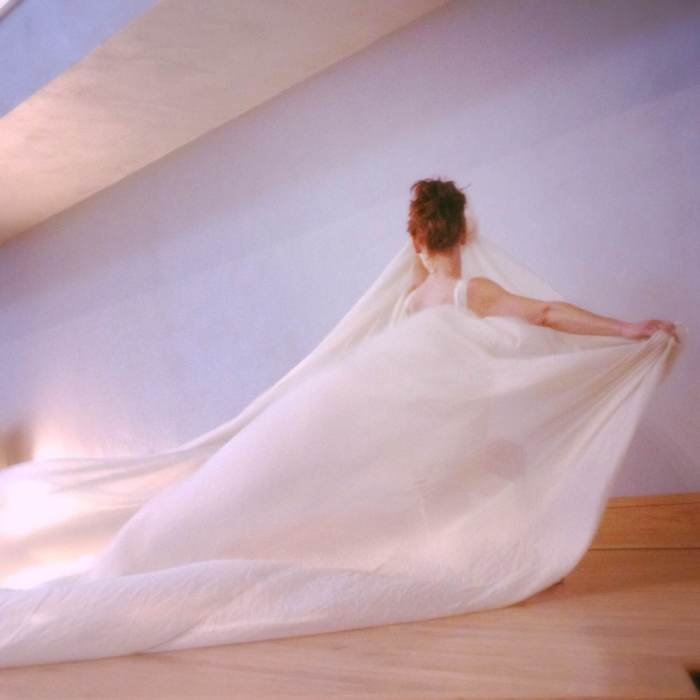abbie powers, modern dance performance art with silk, silk art, silk dance